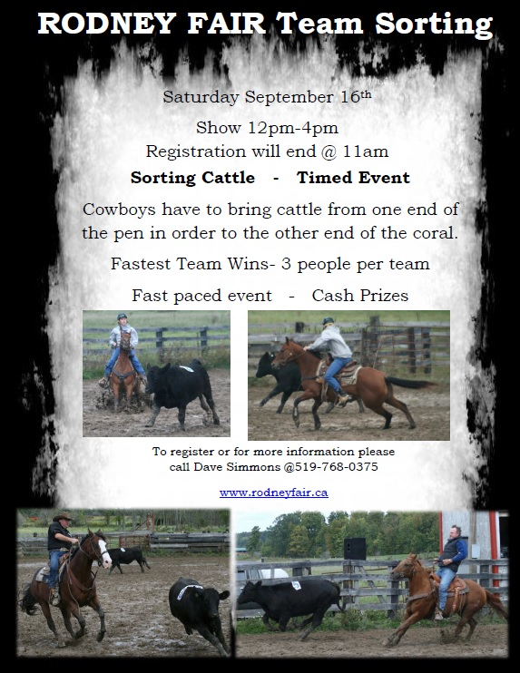 Horse Show Poster